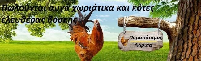 Μπλογκ - Kotesauga.blogspot.gr