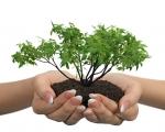Βιολογικά είδη και βιολογικές καλλιέργειες