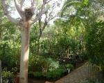 Κατασκευή και συντήρηση κήπων