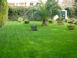 Συντήρηση κήπου και αυτόματο πότισμα